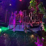 Jungle Lounge & Bar